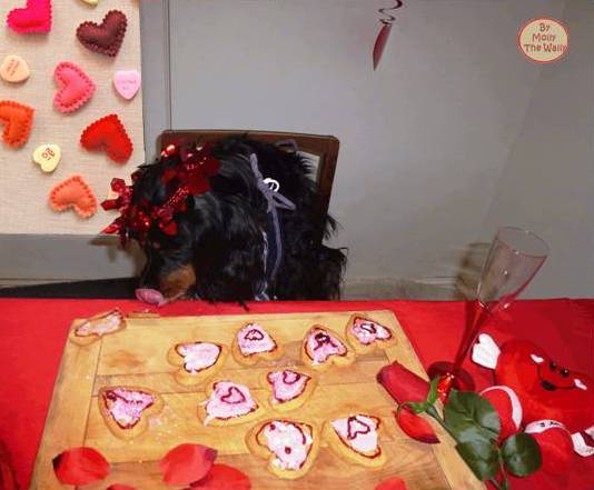 Molly The Wally says, make a start and show some art on my heart shaped cookies.14