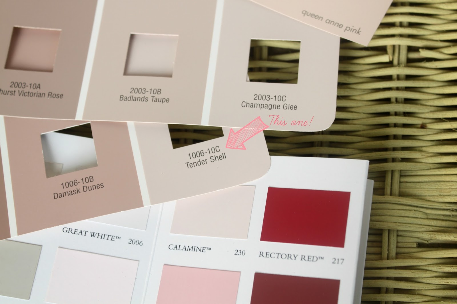 The papered house blush pink for the master bedroom for Sample bedroom colors