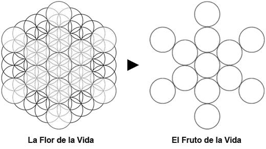 Geometría Sagrada al Descubierto FruitofLife