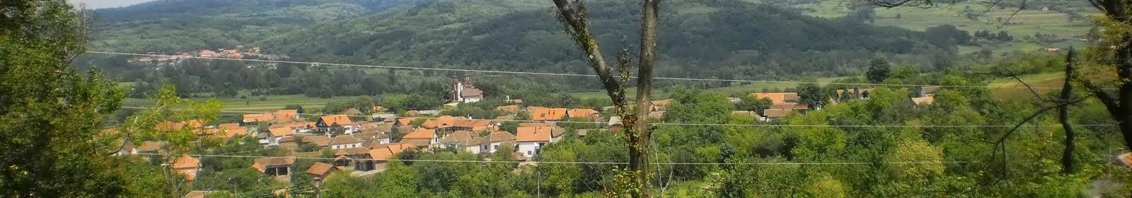 Панорама Мишљеновца, 2010.