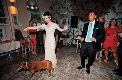 perrito bailando en matrimonio