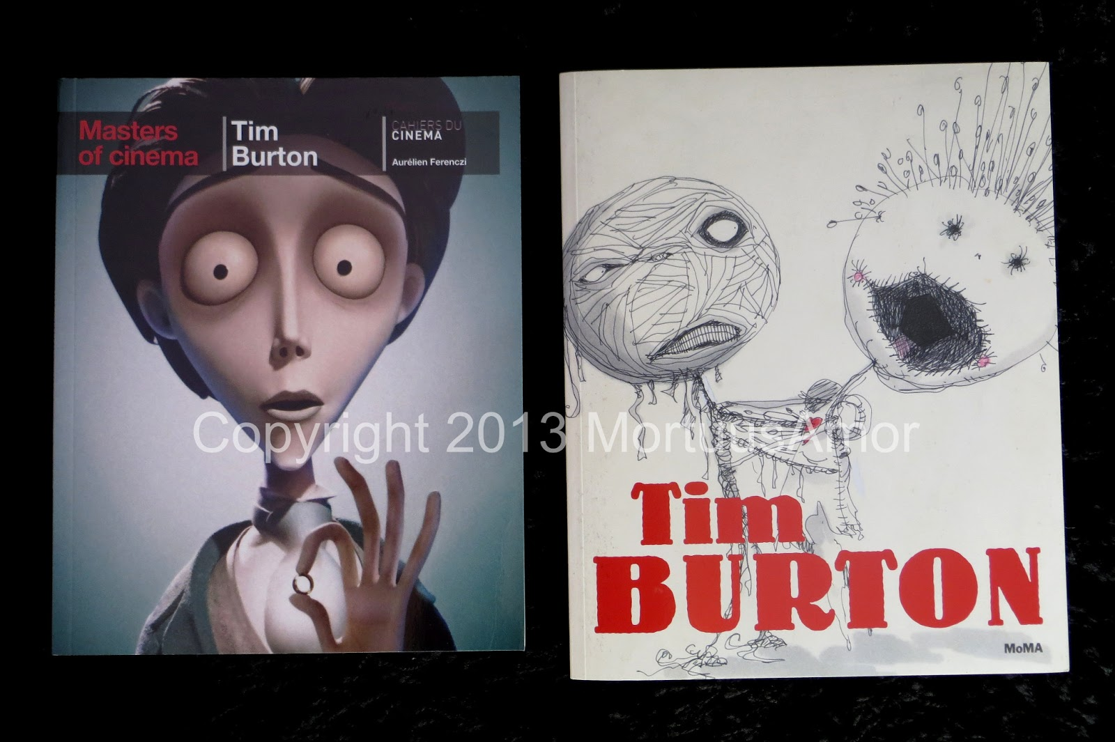 tim burton cinematic techniques The gothic elements in tim burtons movies film studies essay print reference this published: 23rd march, 2015 disclaimer: this essay has been submitted by a.