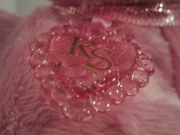 "2014 Kitty Surprise ""Sunshine""'s collar tag."