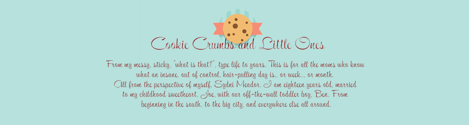 Cookie Crumbs and Little Ones