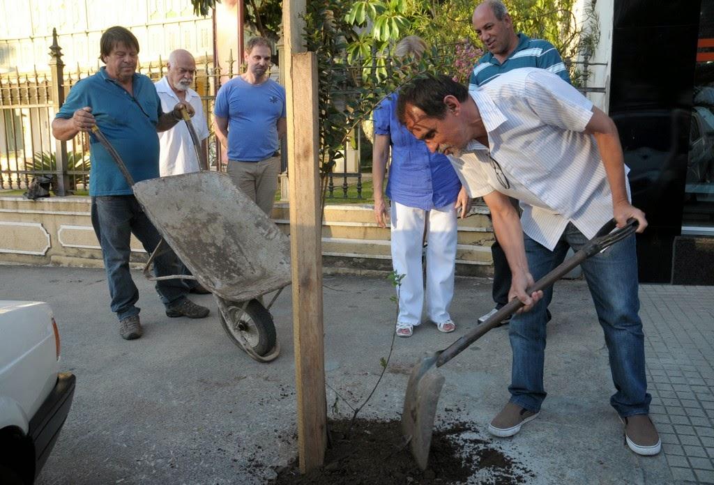 - O plantio de árvores foi feito pelos funcionários da Secretaria de Cultura