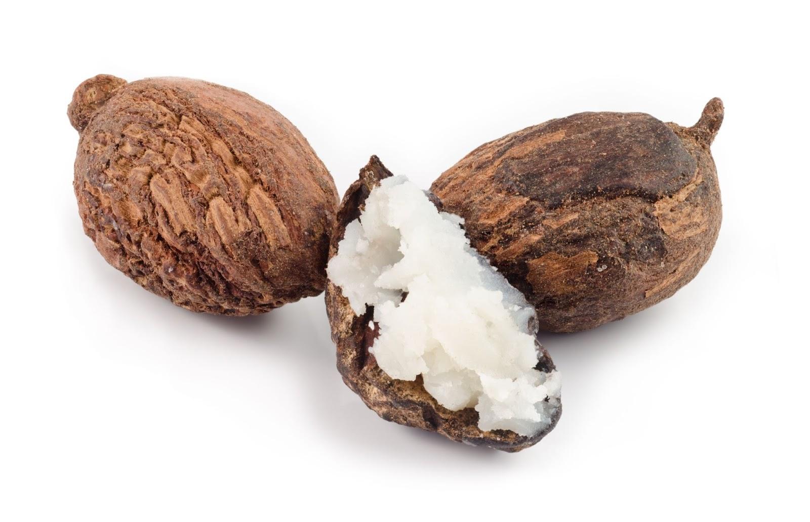 「乳木果油」的圖片搜尋結果