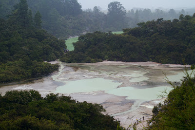 A photograph of the Thermal Pools in Rotorua, New Zealand