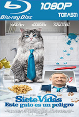 10 - Siete vidas, este gato es un peligro (2016) [BDRip m1080p/Dual Castellano-ingles] [Multi/MG]