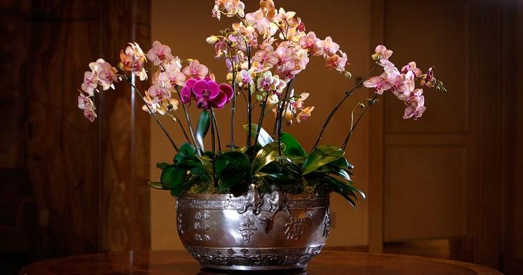Ajouter De Beaut Avec Une Dcoration Florale Dcor De