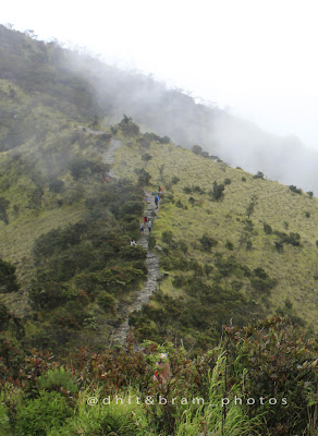 Trek pos 5 gunung lawu