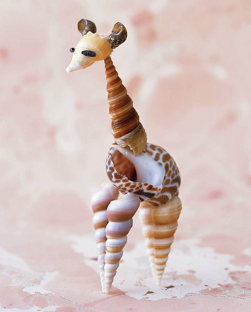6 Sensational Seashell Crafts to Do With Your Kids