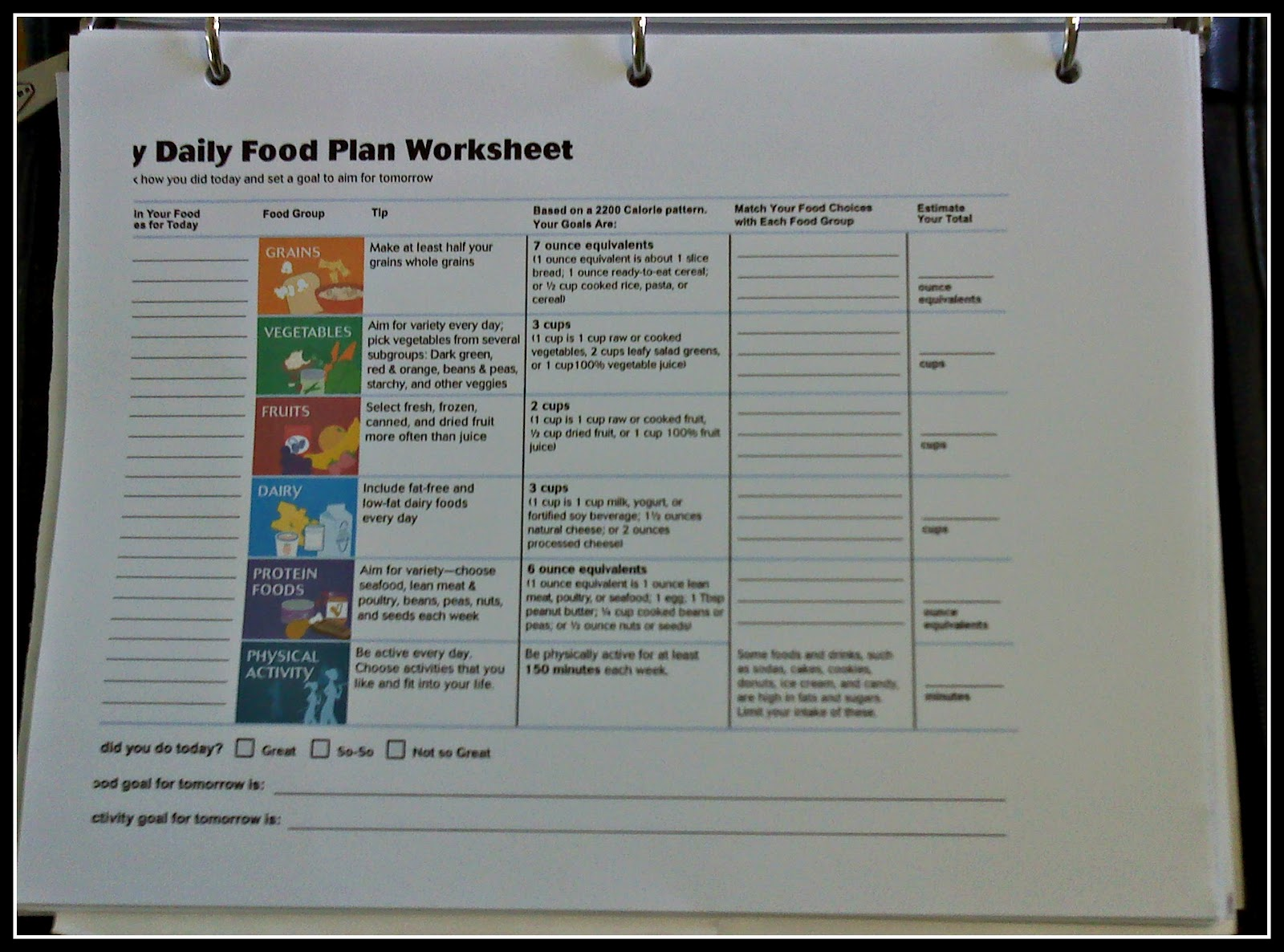 Printables My Daily Food Plan Worksheet my daily food plan worksheet davezan davezan