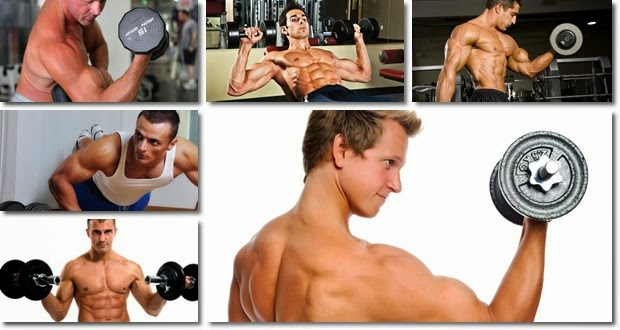 how to build muscle