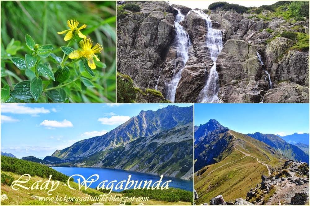 Wagabunda - włóczęgi, wędrówki, podróże