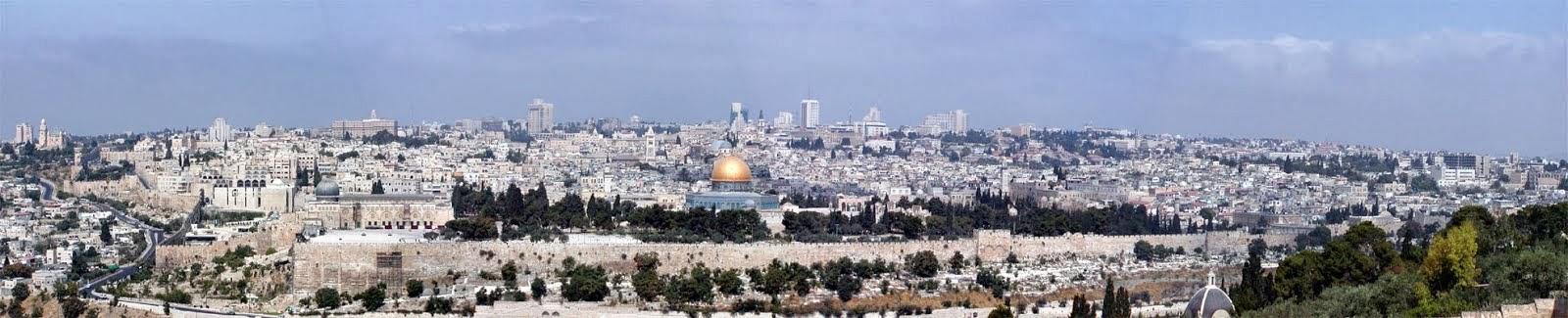 ההסתדרות הישראלית לקהילות האנוסים