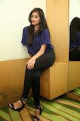 Bhanu sri mehra sizzling photos-thumbnail-20
