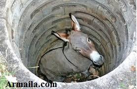 armaila.com - Masalah dan Tantangan Menjadi Penyelamat