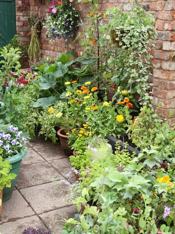 Plantar en contenedores con mucho estilo guia de jardin for Jardines con estilo