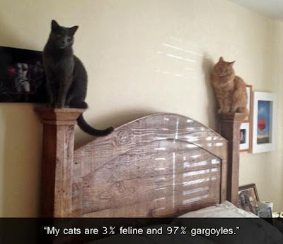 Two cats perched on bed posts. My cats are 3% feline and 97% gargoyles.
