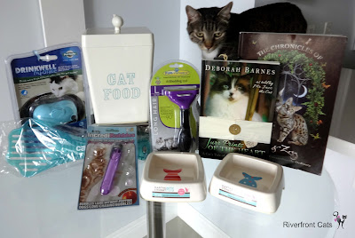 Contest giveaway feral cats fundraiser nonprofit