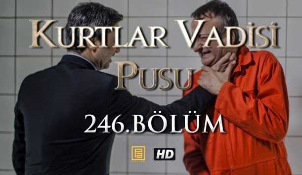http://thealemdar.blogspot.com/p/kurtlar-vadisi-pusu-246bolum.html