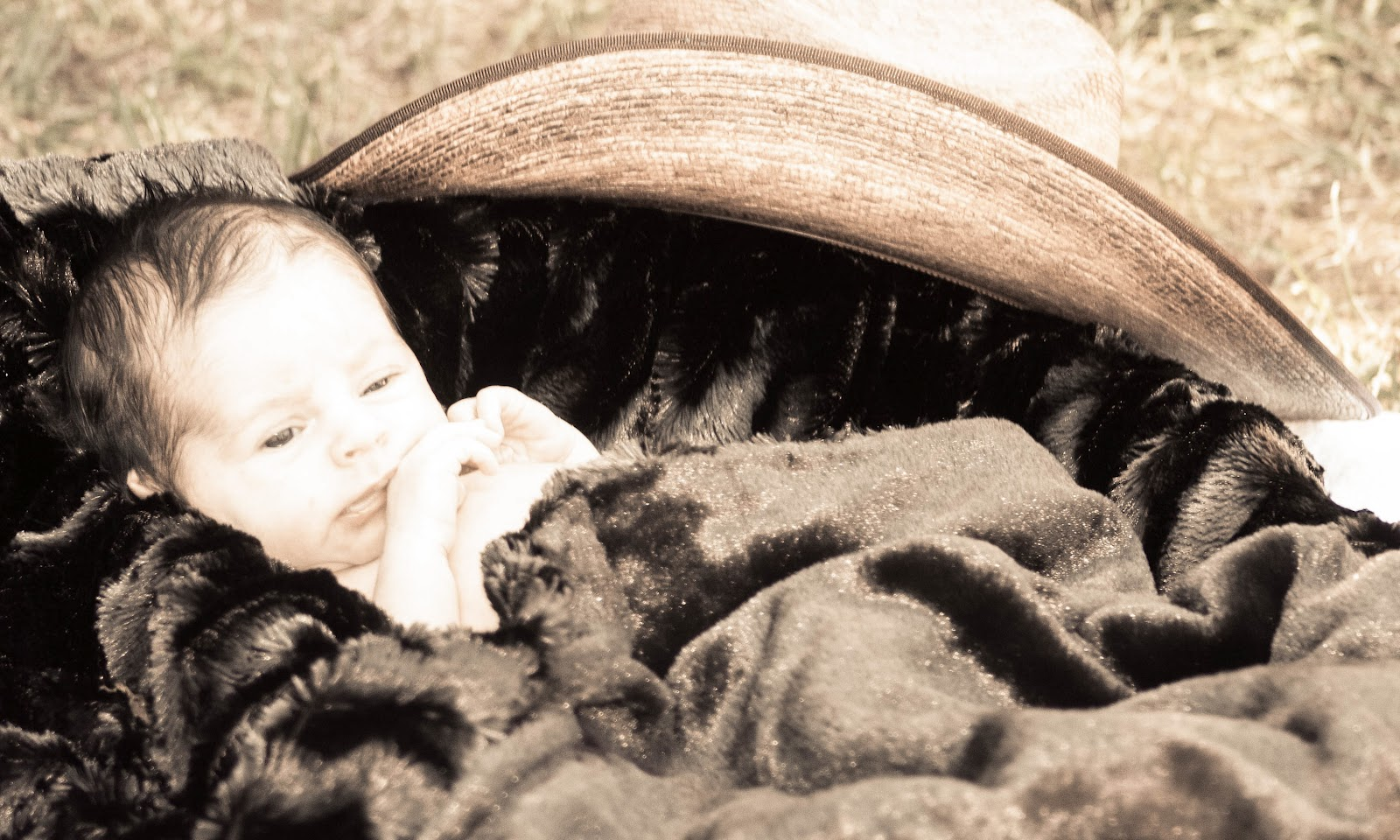 Deanna Kay Photography