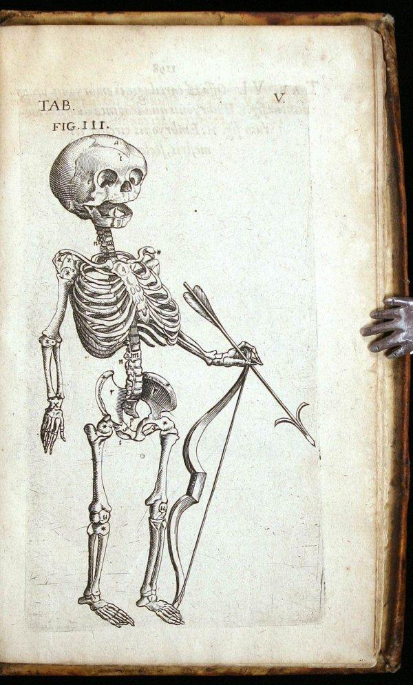 Morbid Anatomy: Theatrum Anatomicum, Caspar Bauhin, 1605