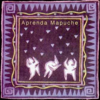aprender-mapuche-frontal