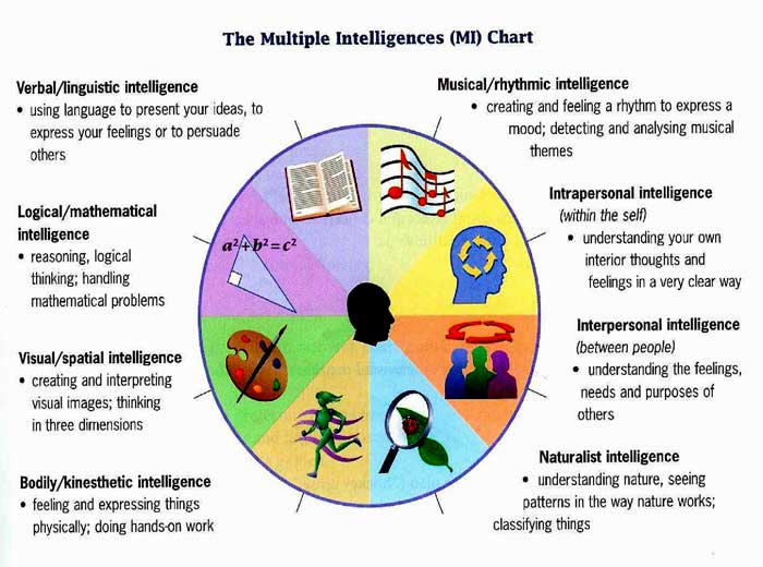 Summary of a Rounded Version: The Theory of Multiple Intelligences