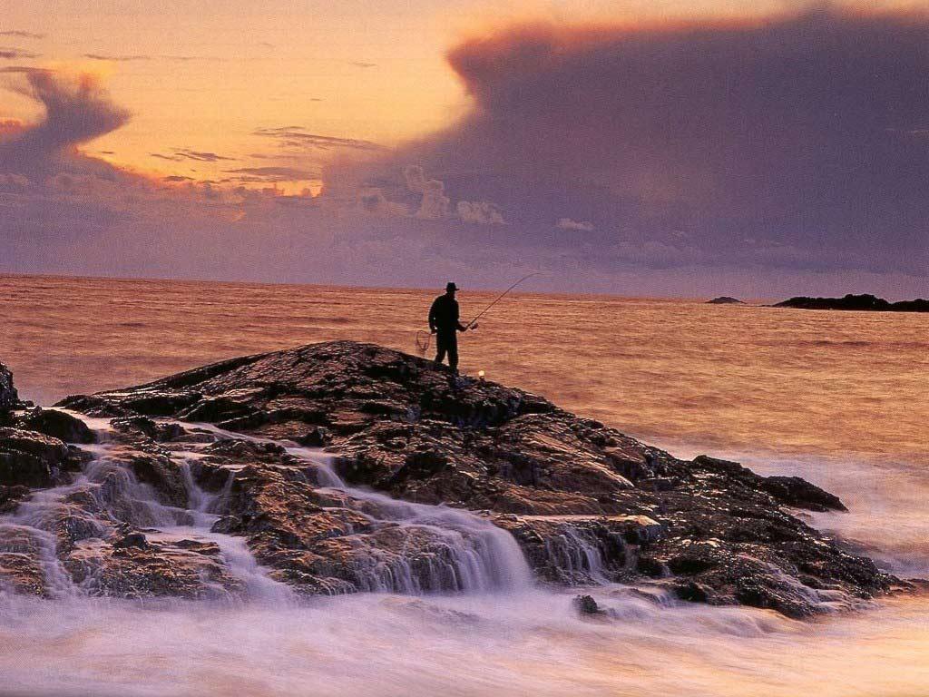 http://2.bp.blogspot.com/-Ym-UI734lG4/TtxHTqURdrI/AAAAAAAAAbk/-QTUlBzAaT0/s1600/fishing-wallpaper-1-722340.jpg