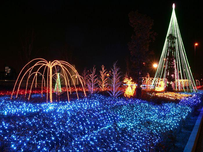 http://2.bp.blogspot.com/-Ym2ClGEnDg0/Ts_4MA54T2I/AAAAAAAAb0g/mWFpzSHpQ8A/s1600/Christmas-Lights-1.jpg