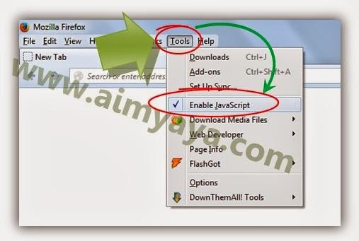 Gambar: Menu enable/disable Javascript dari add ons JS Switch