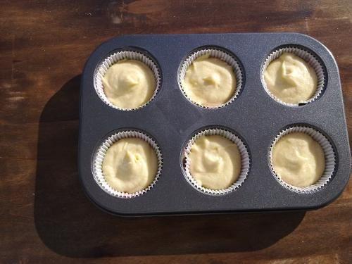 horno-solar-cupcakes