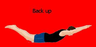 Latihan Otot Punggung (Back up)