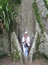 Yaxchilán eterno