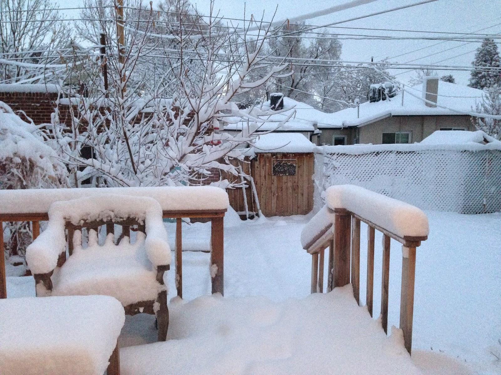 February 1 snowy morning