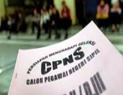 Cek Pengumuman Rincian Formasi CPNS Tahun 2014 dan Alur Pendaftaran di panselnas.menpan.go.id