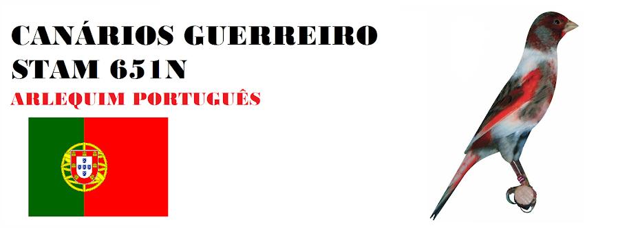 CANÁRIOS GUERREIRO