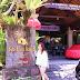 Bebek Tepi Sawah, Ubud Bali