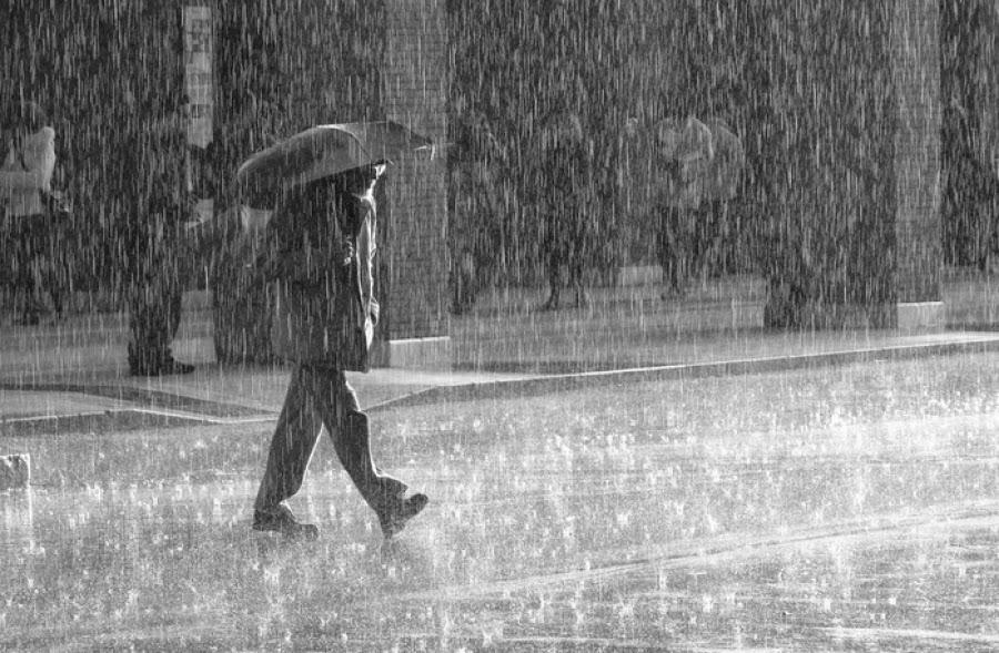 http://freshsnews.blogspot.com/2015/03/rain-snow.html