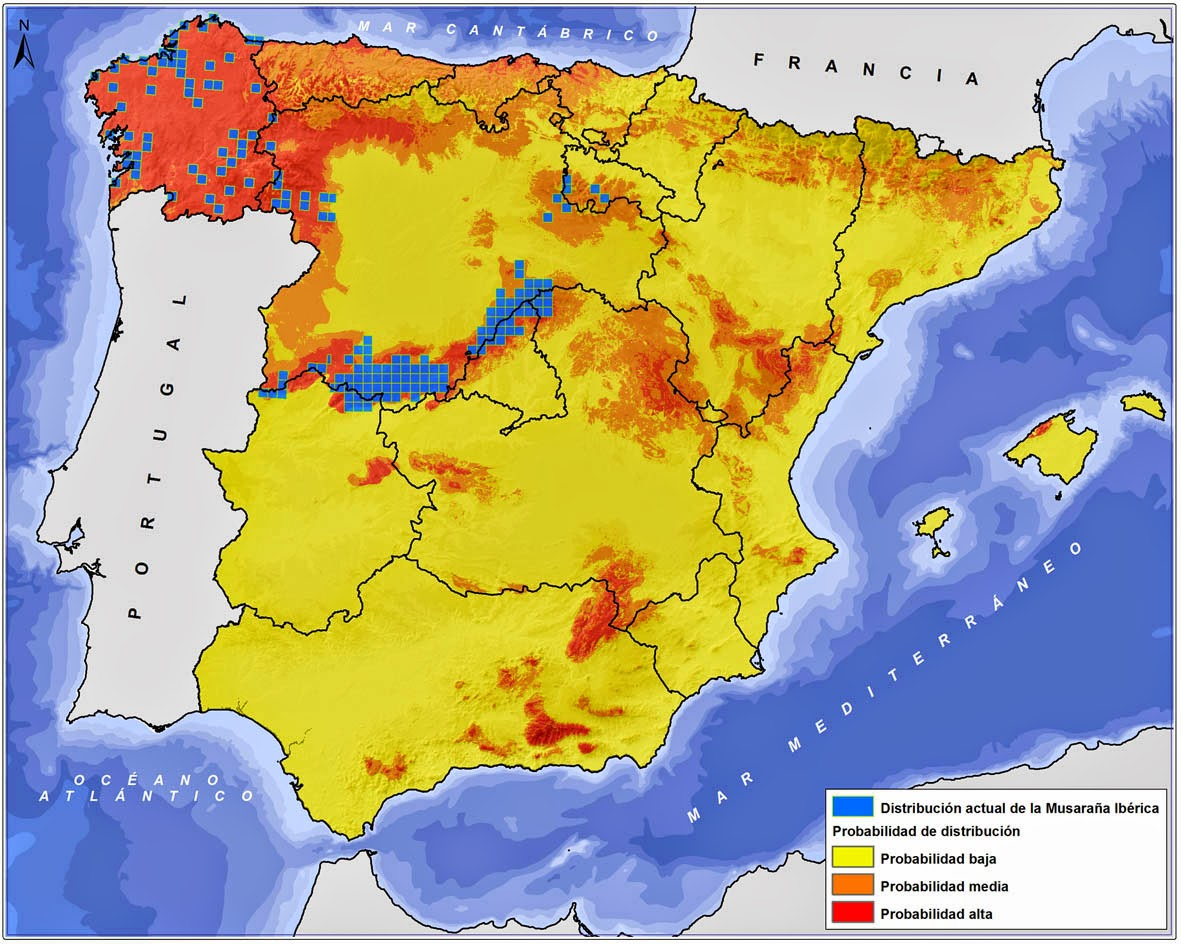 Ejemplo de distribución actual y potencial para la Musaraña Ibérica