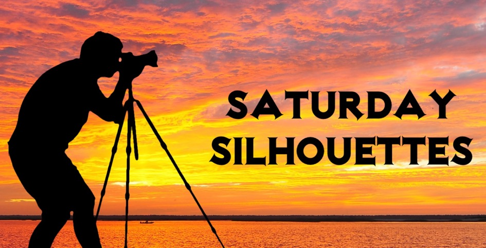 Home of Saturday SIlhouettes