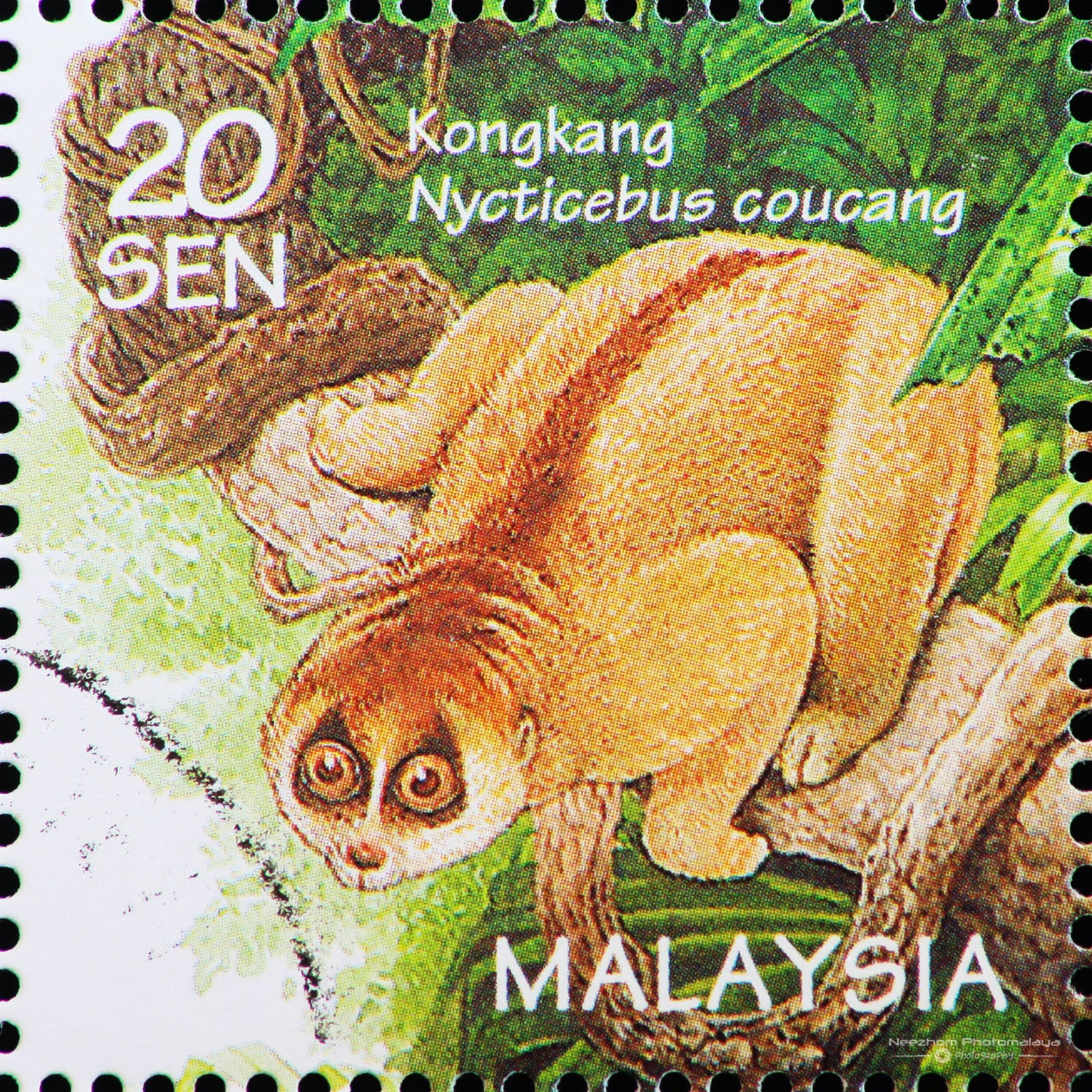 Malaysia 1996 Wildlife - Sunda Slow Loris / Kongkang (Nycticebus coucang) 20 sen