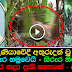 Gampaha,Kotadeniyawa 5 year old Missing Girl's Body Found in a paddy field (Watch Video)