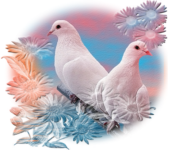 Открытка с голубями