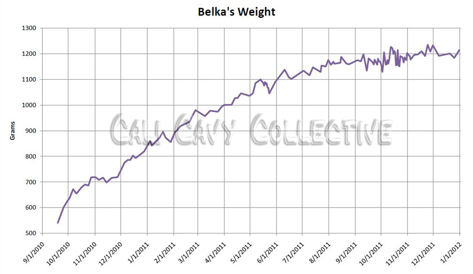 Cali cavy collective a blog about all things guinea pig may 2012 guinea pig weight charts geenschuldenfo Choice Image