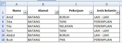 Filter dalam Microsoft Excel