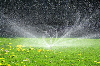 A Lawn Being Watered