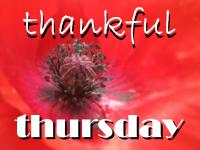 Thankful Thursday hosted in November by Laurie @ Women Taking a Stand