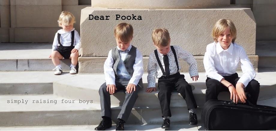Dear Pooka,